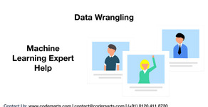 Machine Learning Assignment Help: Data Wrangling