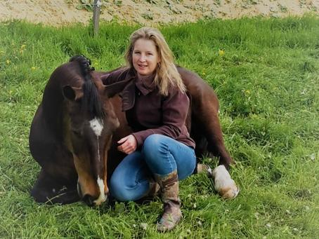 Спортивные лошади и АК