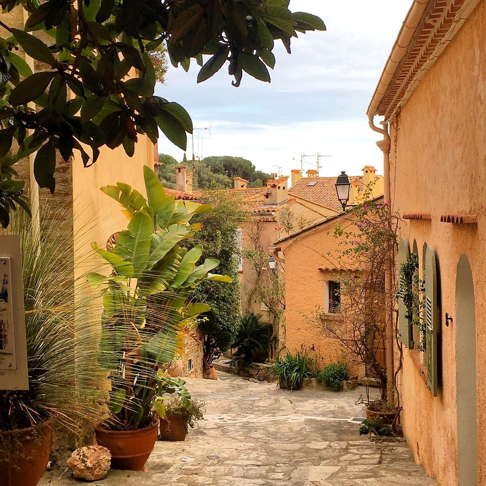 Bormes-les-Mimosas, Var, Provence-Alpes-Côte d'Azur Photo © Amanda Ashworth