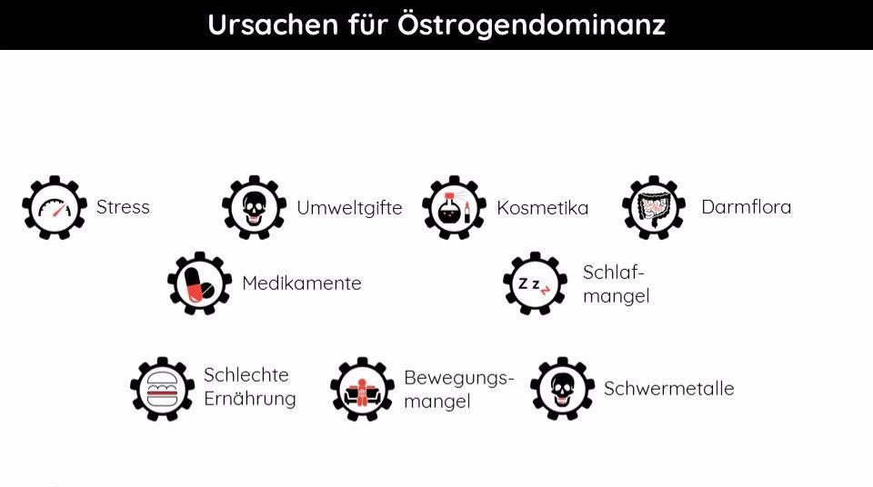 Fettabbau in der deutschen Körperzusammensetzung