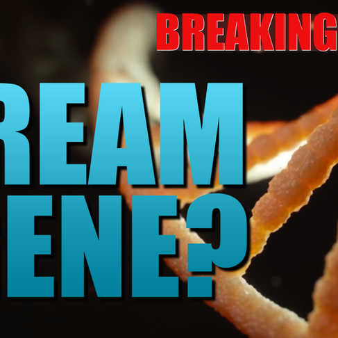 The Dream Gene? - Have we Discovered the Genes for Dreams? - [BREAKING NEWS]