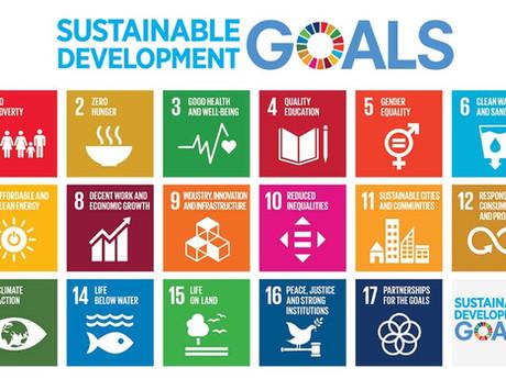 Die Agenda 2030 und wie ihr mit loopi die Welt verbessert