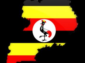 Uganda Government Tenders, Procurement, Bids, RFQ, RFP, Public Procurement, Global Tender Notice