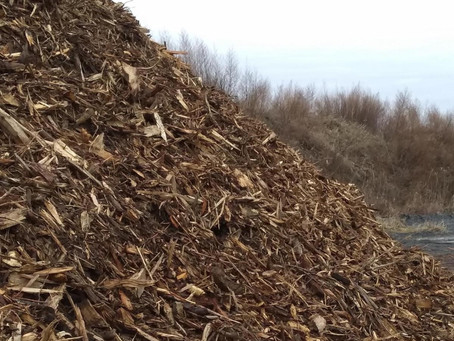 Alpha Ridge Landfill - First Ever Free Shredded Wood Giveaway