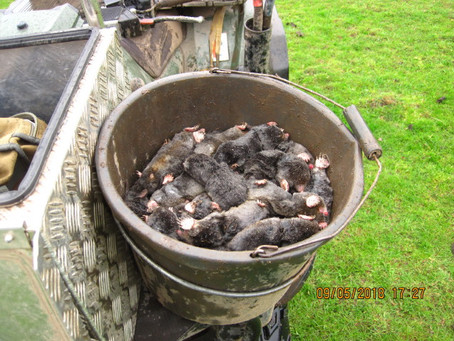 Need a bigger bucket