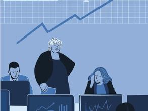 Mållaus effektiviseringsreform