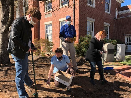 Georgia College Students Plant Daffodils in Honor of Holocaust Victims