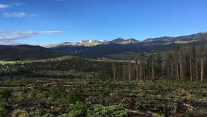 Colorado Trail - Day 11