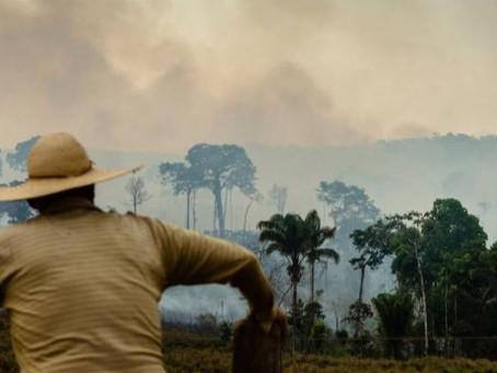 Ex-ministros em carta: Descuido com clima pode sair mais caro que pandemia
