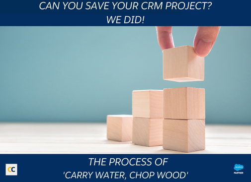 Can you save your CRM project?