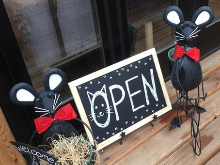 宿木カフェ&レストランへようこそ!その1