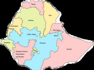 Update: Genocide Emergency Alert on Ethiopia - November 2020