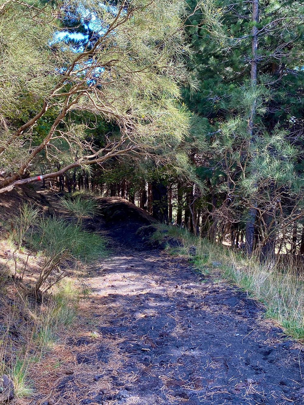 mount-etna-hikes-schiena-dell-asino-3
