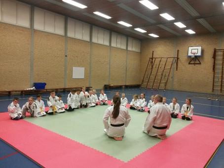 Judoclinic in groep 2