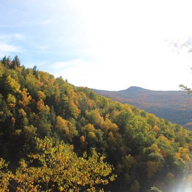 Sarah, Catskills during Autumn