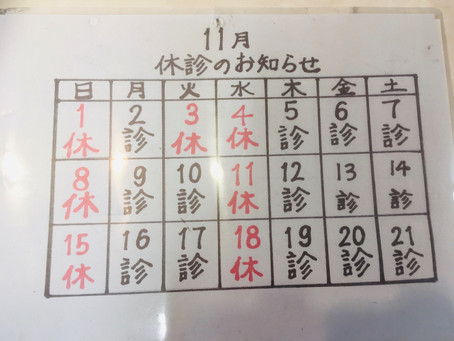休診日のお知らせ(11月)東生駒トシオデンタル