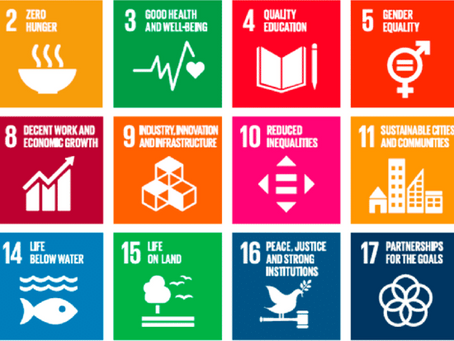 Why Do We Need The 17 UNSDGs?