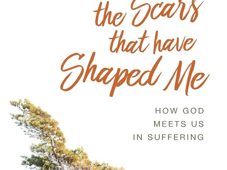 Book Review The Scars That Have Shaped Me: How God Meets Us in Suffering - Vaneetha Rendall Risner