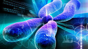 Guided Imagery Telomeres and Longevity