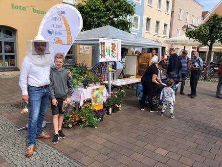 Aktion zum Welttag der Biene