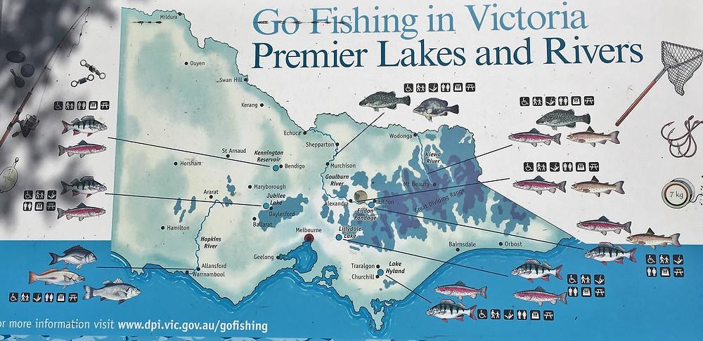 Fishing in Victoria| skitour.club| Блог Сергея Чеботова