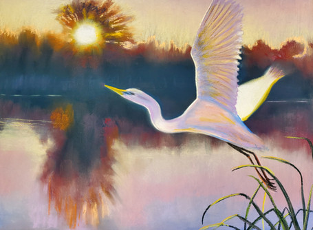 Gossarmer WIngs Pastel Shawn Dell Joyce 16x20
