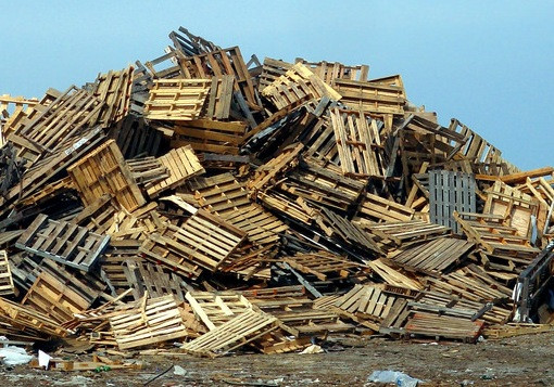 A mountain of pallets at the landfill