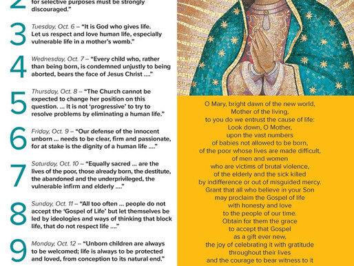 NOVENA FOR THE CAUSE OF LIFE - OCTOBER 4-12