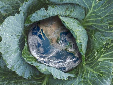 How Eating Right Can Save the World