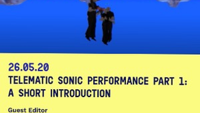 Telematic Sonic Performance-The Sampler