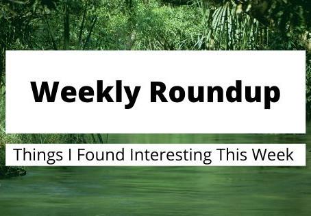 Weekly Roundup 11/3/2019