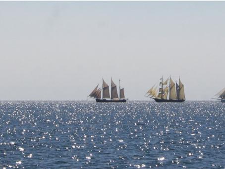 Sejl med sejlskibet Frem på Fyn Rundt 2020