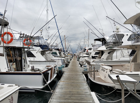 More Marinas Connected to BoatSecure