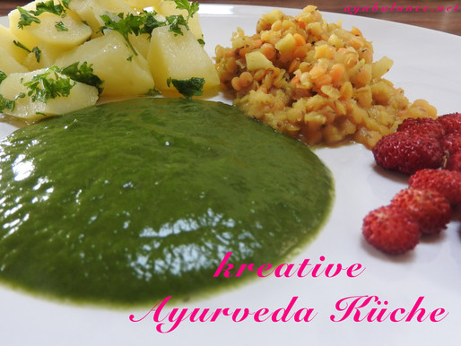 Kreative Ayurveda Küche!