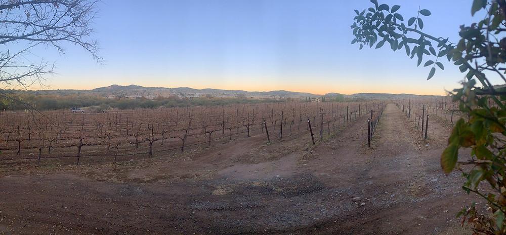 Sedona sommelier offering wine education for Verde Valley restaurants.