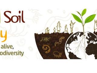 Indlæg og præsentationer fra fejringen af Jordbundens dag om jordens biodiversitet.