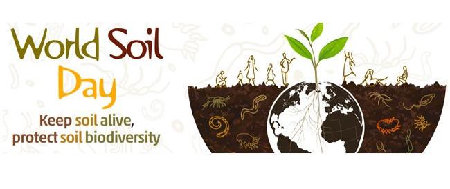 Virtuel fejring d. 16. december af Jordbundens dag – om jordens biodiversitet.