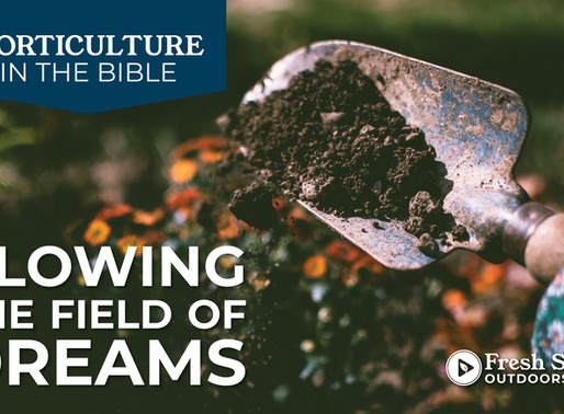 Horticulture in The Bible: Plowing the Field of Dreams