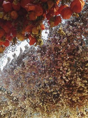 bloemenmarket amesterdam
