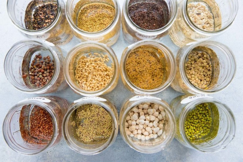 Herbs and Spices to get growing and keep you busy