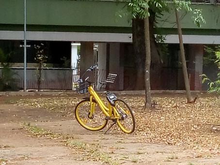 Bicicletas Amarelas