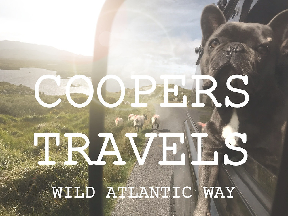 Coopers Travels - Dogfatherz
