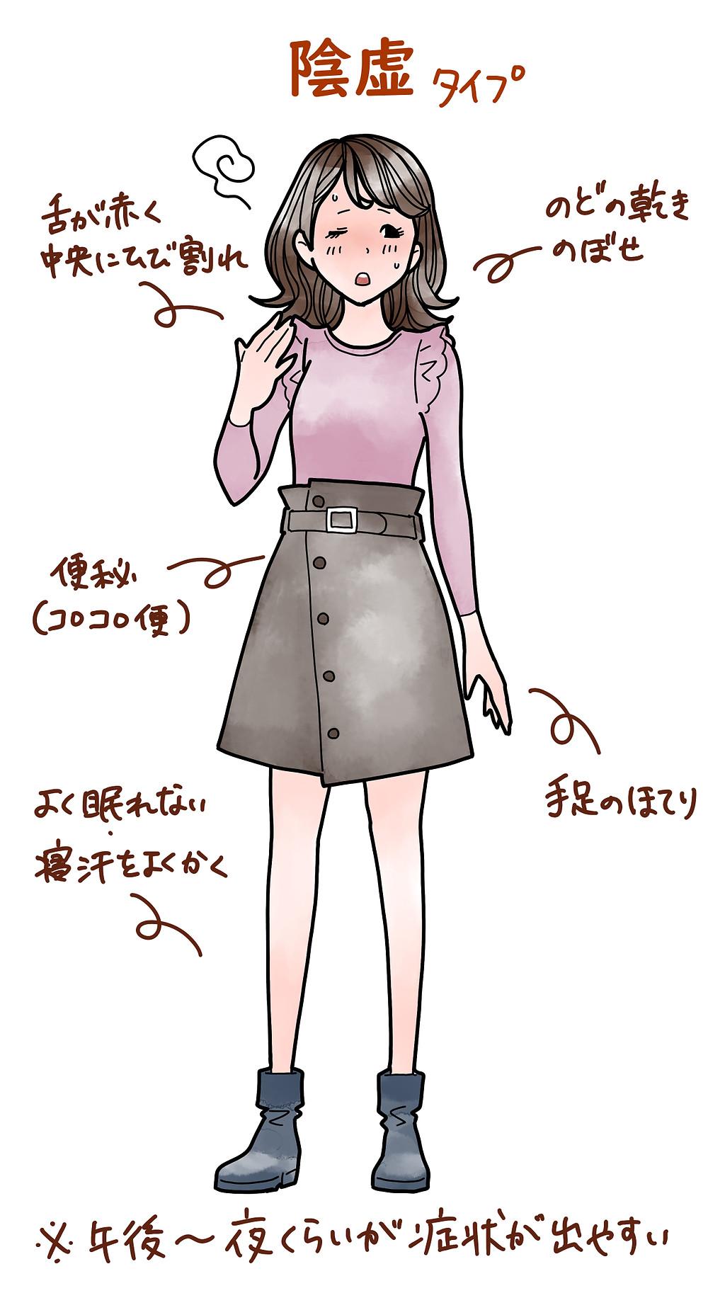 中医学/薬膳 陰虚タイプ 女性 解説イラスト