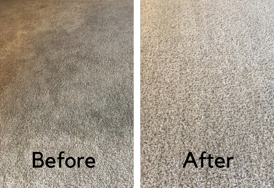professional carpet cleaning before and after pictures
