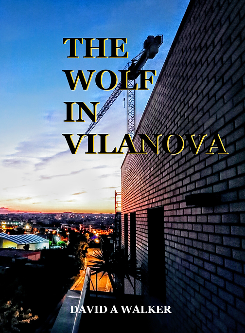 VILANOVA COVER 2  CROP  MY PHOTO black.p