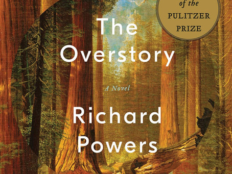 "Book Review - ""The Overstory"" by Richard Powers"