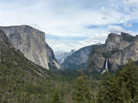 I Meravigliosi Parchi della California: Yosemite e Sequoia
