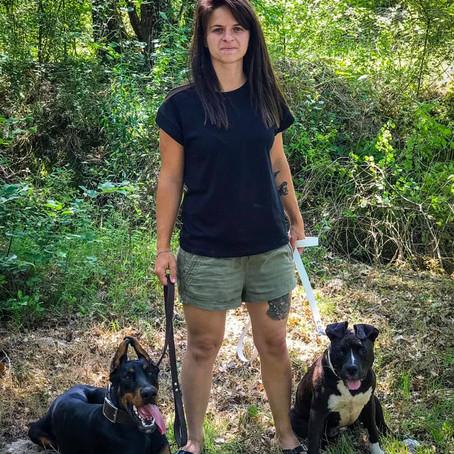 Dog , jeune doberman a rejoint sa Famille.