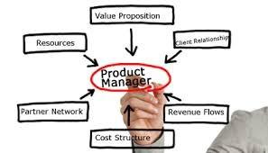 Product Management Consultant