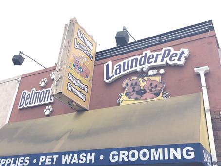 Belmont LaunderPet